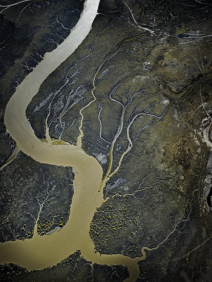 Tidal Creek Wyndham