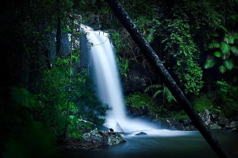 Curtis Falls, Tamborine National Park, Queensland