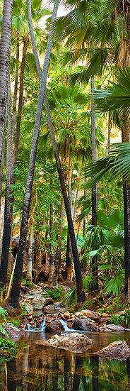 Zeebede Springs, El Questro Wilderness Park, Kimberley, North Western Australia