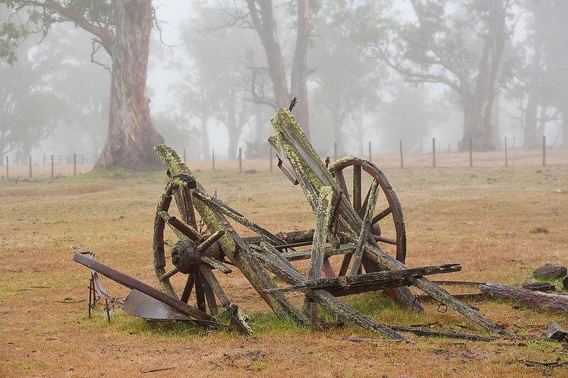 Old wagon in the fog, Tasmania, Australia