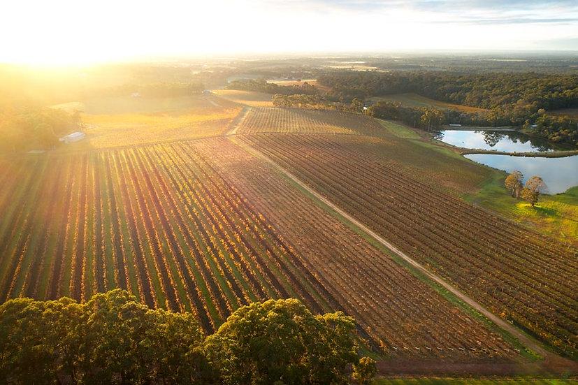 Aravina Estate, Margaret River, Western Australia