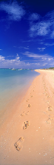 Footprints on Monkey Mia beach, North Western Australia