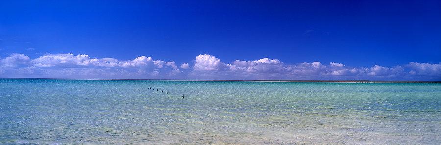 Crystal clear waters of Monkey Mia beach, North Western Australia