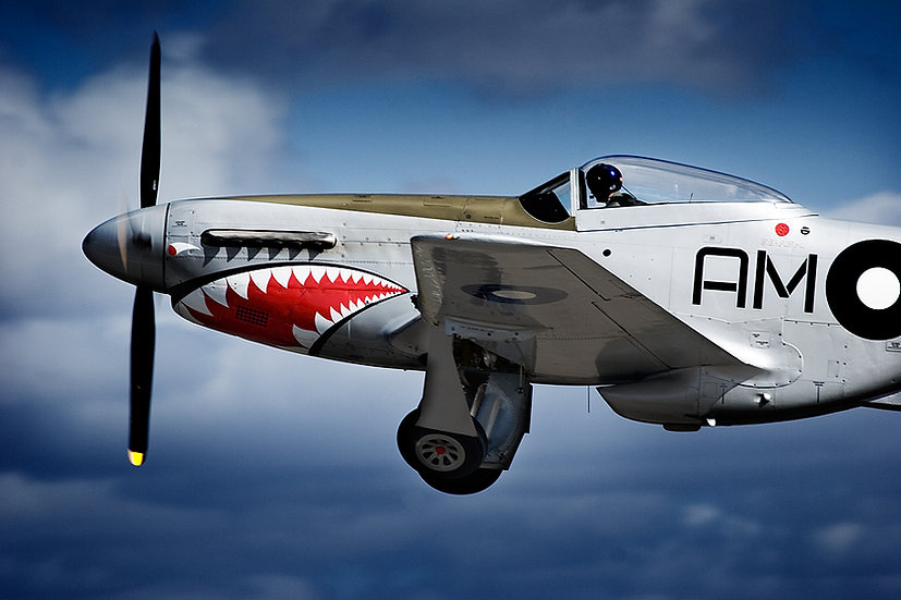 P-51 Mustang aeroplane.