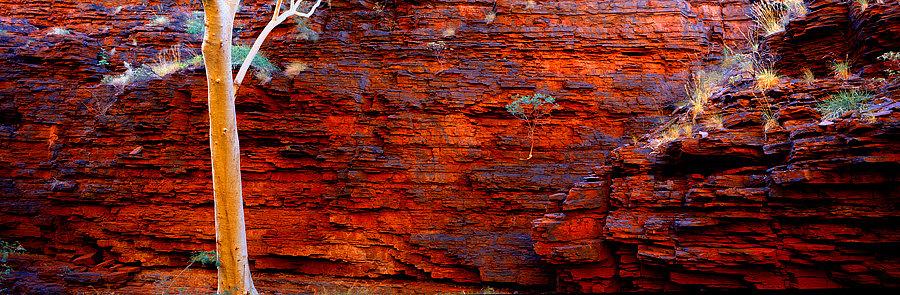 Rock wall, Karijini National Park, Pilbara, North Western Australia