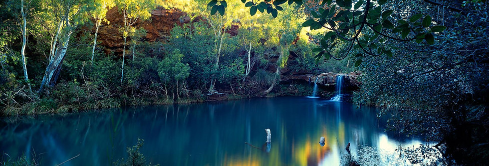 Fern Pool, Karijini National Park, Pilbara, North Western Australia