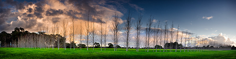 Fraser Gallop Estate, Winery, South Western Australia