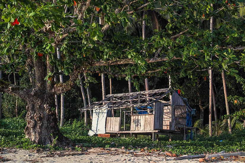 Dilapidated Hut, West Papua