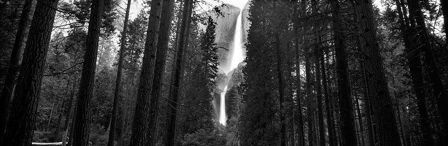 Yosemite National Park California USA