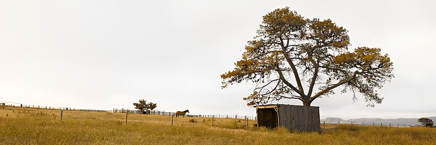 Farmland, Tasmania