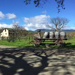 Vineyard_Wagon_edited
