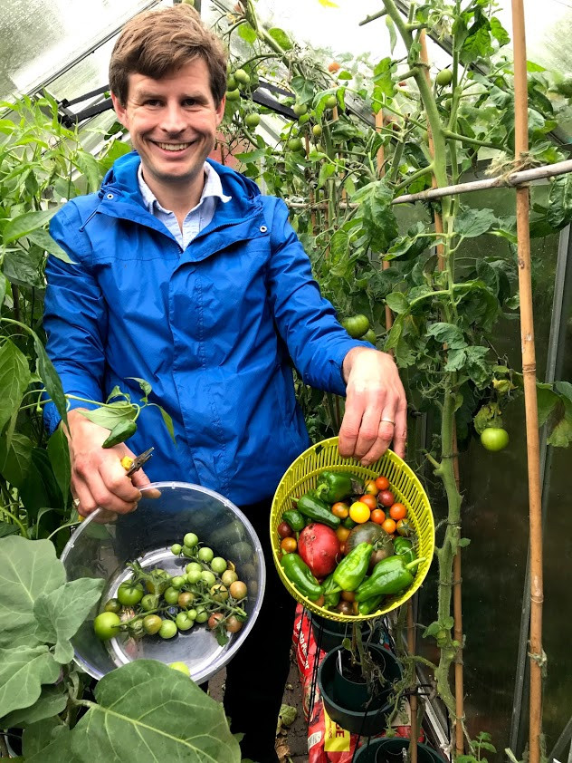 tomatoes, padron peppers, greenhouse