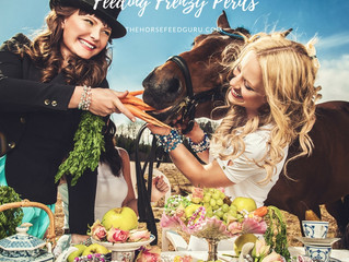 Social Media & Feeding Horses