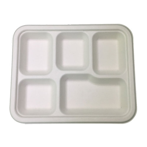 Square Compartment Plate