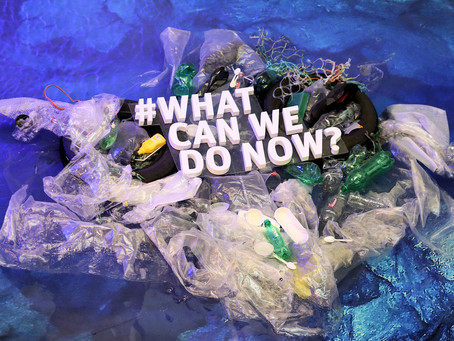 What can we do Now? Biodegradable are the best option...