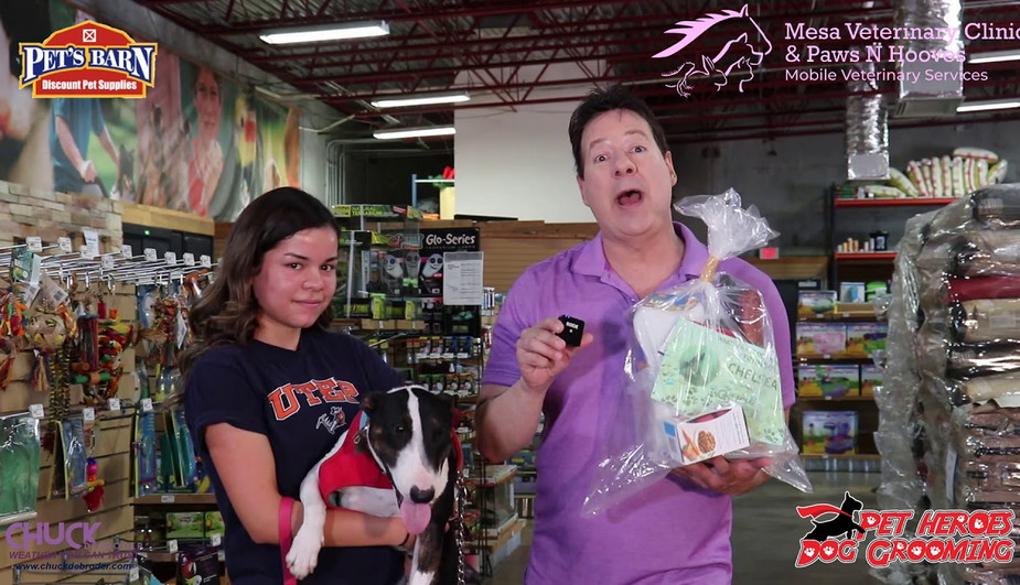CHELSEA SECOND PLACE WEATHER PET OF THE MONTH JULY 2019