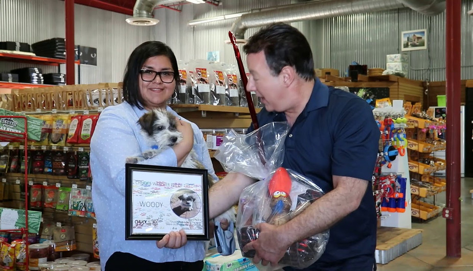 WOODY SECOND PLACE WEATHER PET OF THE MONTH MARCH 2019
