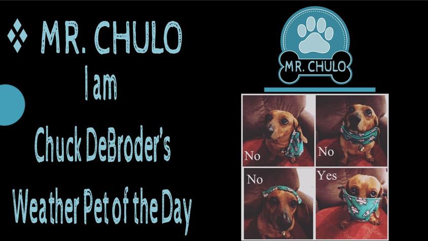 MR. CHULO