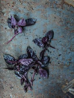 """Food-Fotografie """"Foodlove"""", Stefan Schmidlin Fotograf Basel; Bild 8.jpg"""