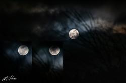7764 Super Lune