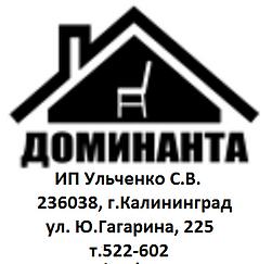 Доминанта_лого.png