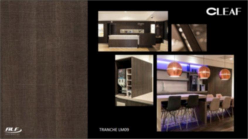 Tranche LM09.jpg