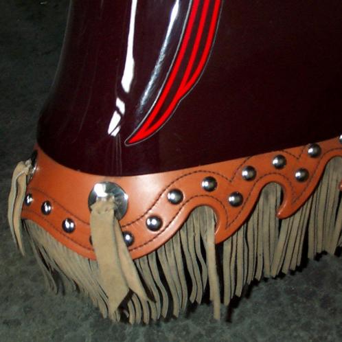 Mud Flaps: Indian or Kawasaki Drifter