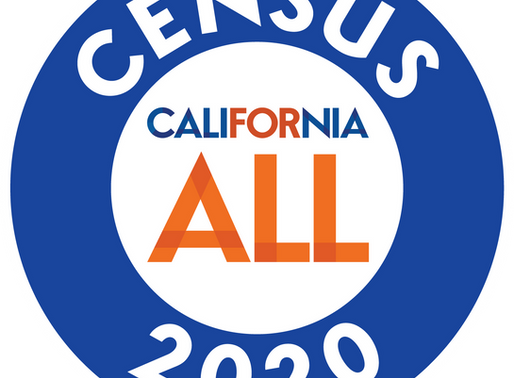 CENSUS 2020! Count your Children too!
