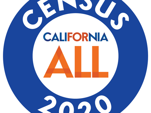 CENSUS 2020! Count your Children too!