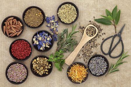 Naturopathy-Herbs.jpeg