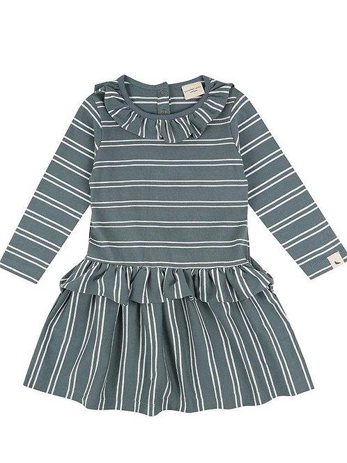 Turtle Dove Organic Steel Stripe Dress