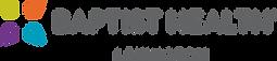 bhlex-rgb-logohorizontal.png