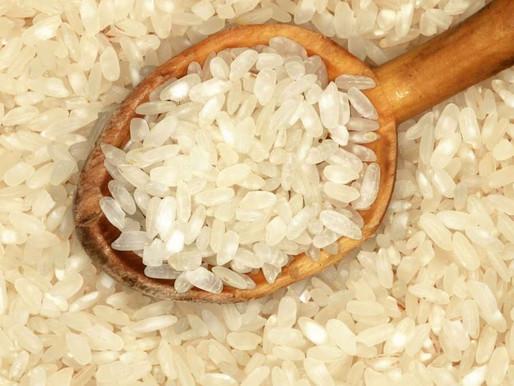 Pode comer arroz na Dieta Low Carb?