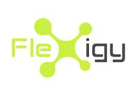 Flexigy.png