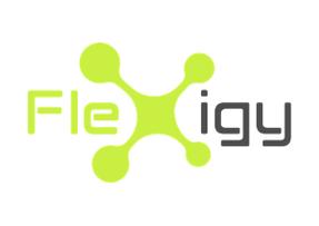 Flexigy
