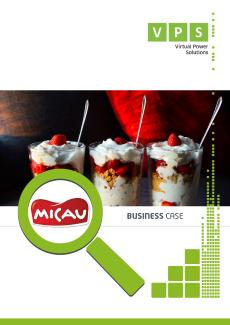 Business_Case_Micau_PT.png