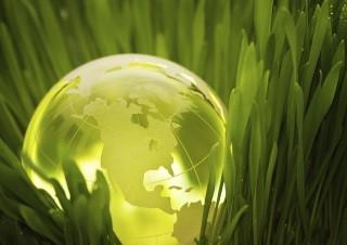 Celebre o Dia Mundial do Ambiente com poupanças energéticas