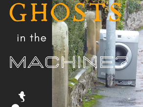 Day 14 ~ Ghosts in the Machine?