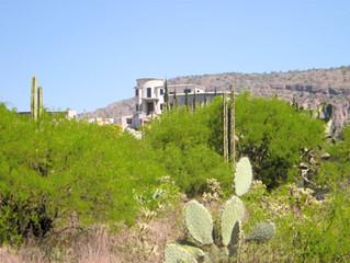 Liserde au Mexique #9 - Te gustan más los güeros o los mexicanos ?