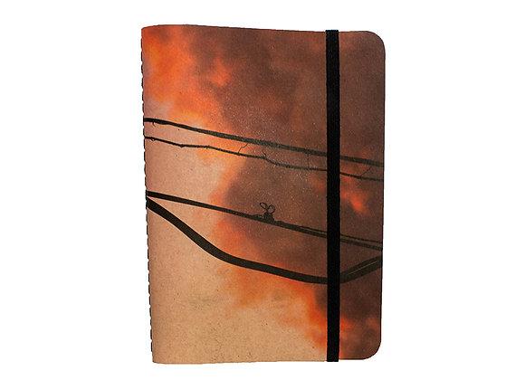 caderno // sumarézinho