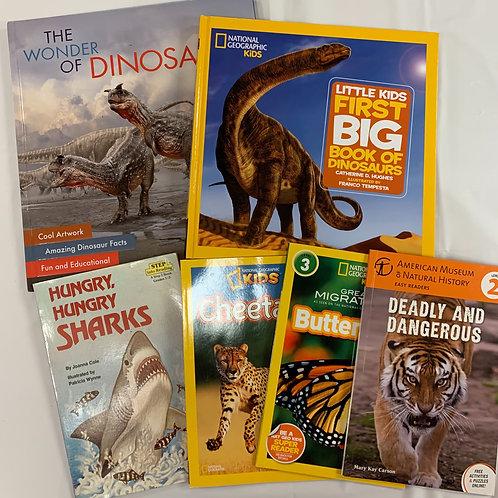 Grade 1 Dinosaurs Book Stack