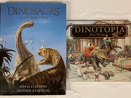 """Grade 5 """"Dinotopia"""" Book Stack"""