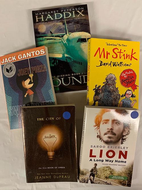 "Grade 4 ""Lion"" Book Stack"
