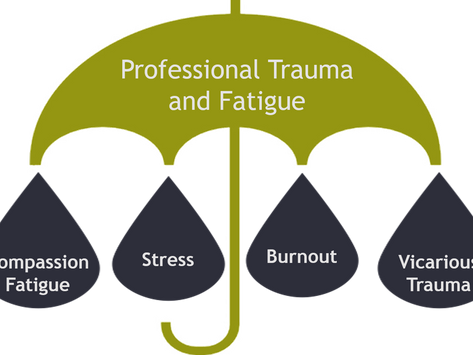 What is Professional Trauma and Fatigue?