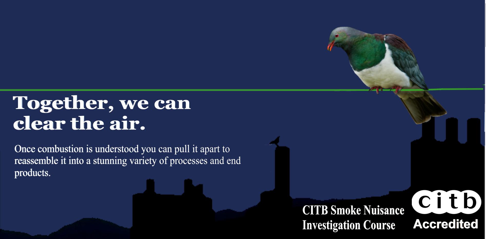 Domestic Smoke Nuisance & Environment