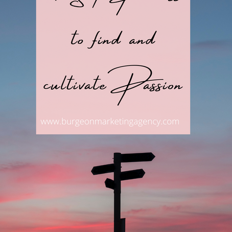 4 Step Process to find and cultivate Passion