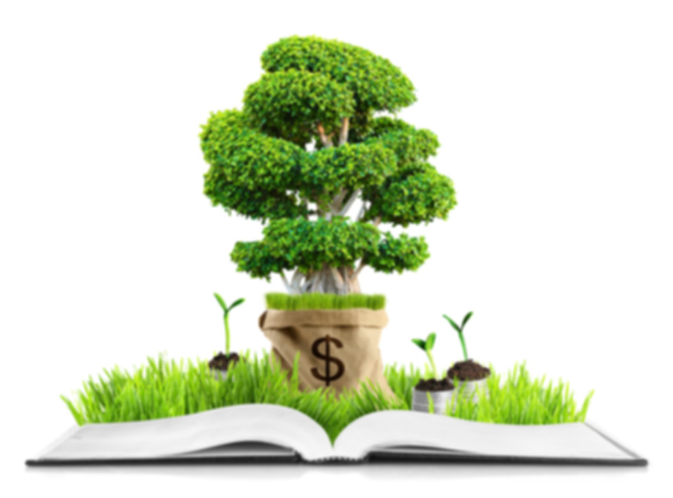 BookSmart Accounting and Finance, Money Tree