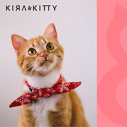 Kira &Kitty logo_Mesa de trabajo 1.jpg
