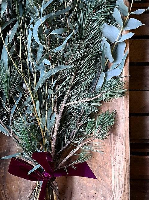 Winter Foliage Bundle