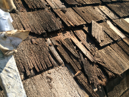 Signs It's Time to Clean Your Cedar Roof